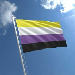 Non Binary - 3' x 5' Polyester  Flag w/Metal Grommets and a Cotton Heading